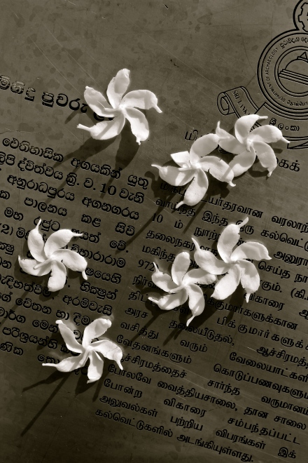Flowers and a plaque -- Mihintale, Sri Lanka